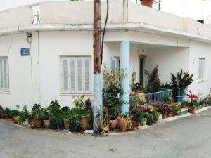 malia crete greece flower pots
