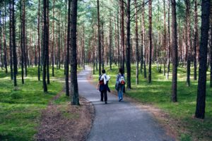 Hiking in Curonian Spit