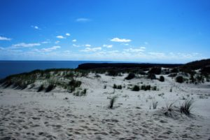 Dead Dune