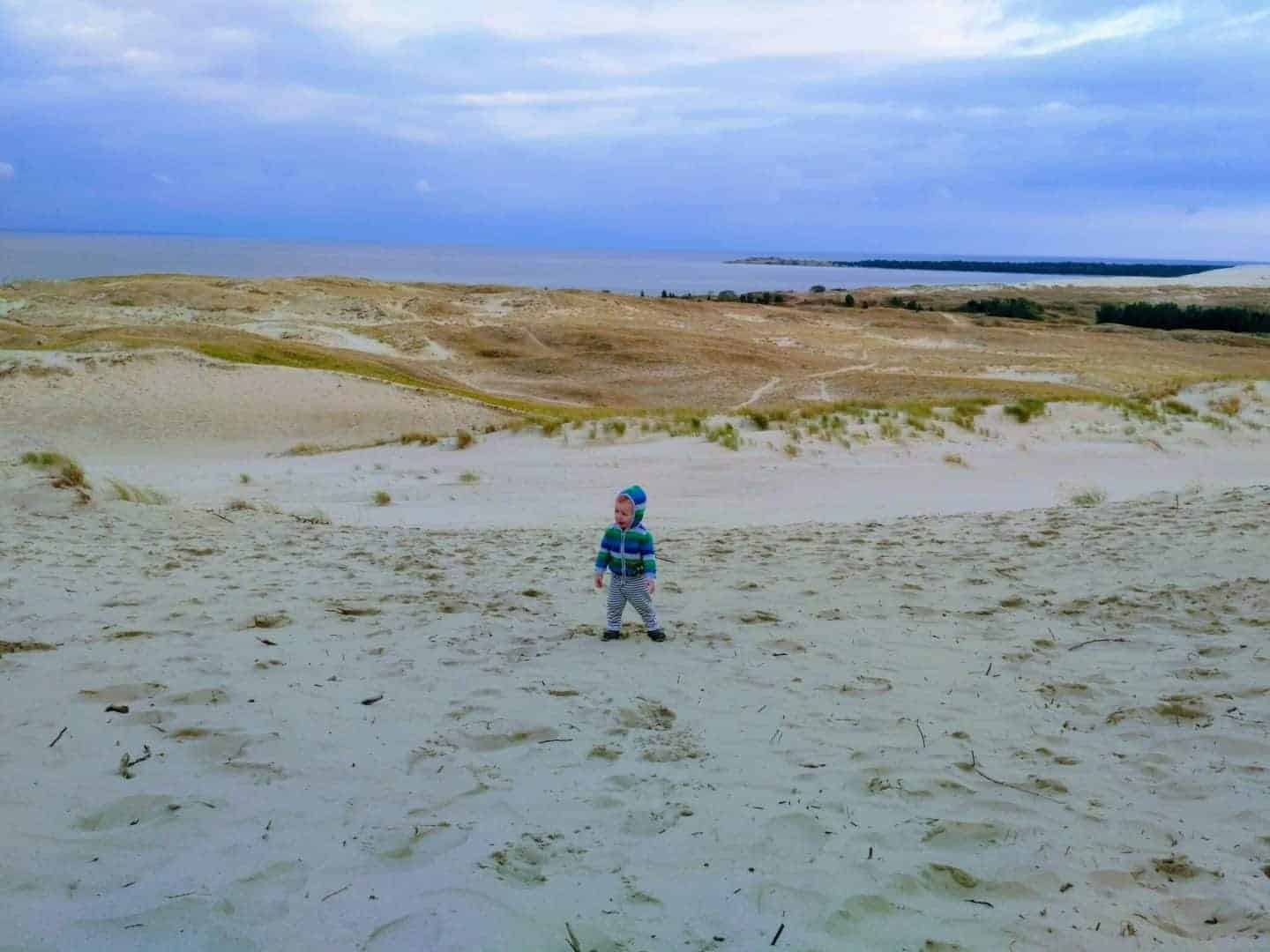 Mark in Curonian Spit dunes in August
